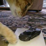 ランボルギーニを破壊する巨大猫(*'ω'*)
